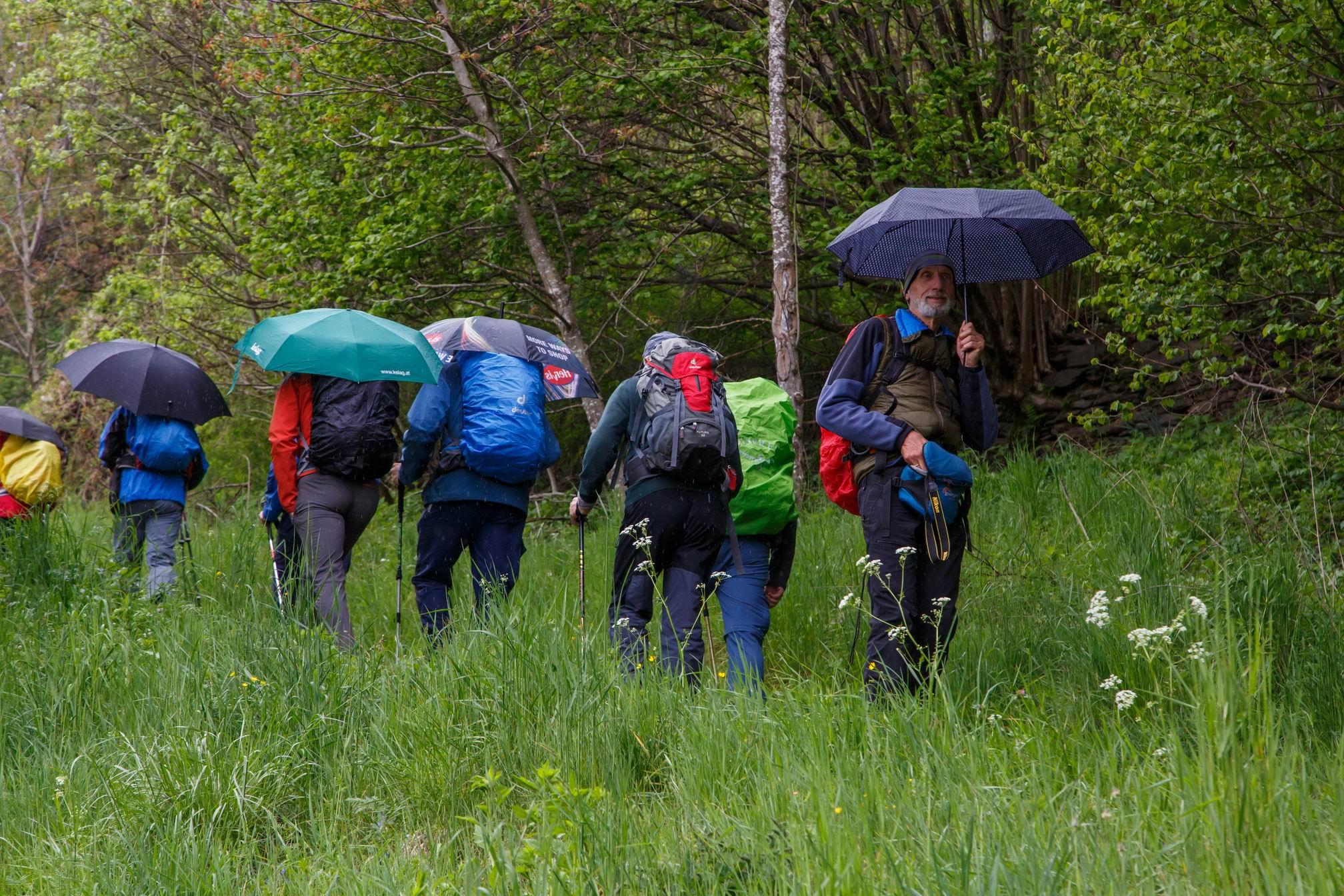 Vierbergewallfahrt 2019_D6A2601