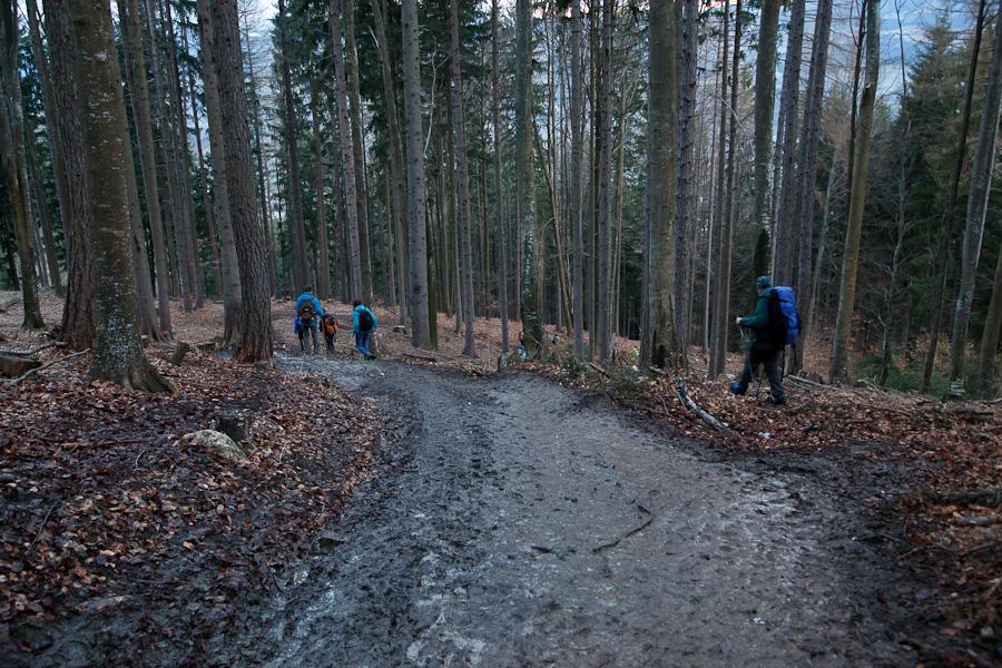 vierbergewallfahrt-2013-wieser-anton_8663