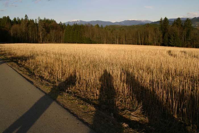 vierberge-2008_0061