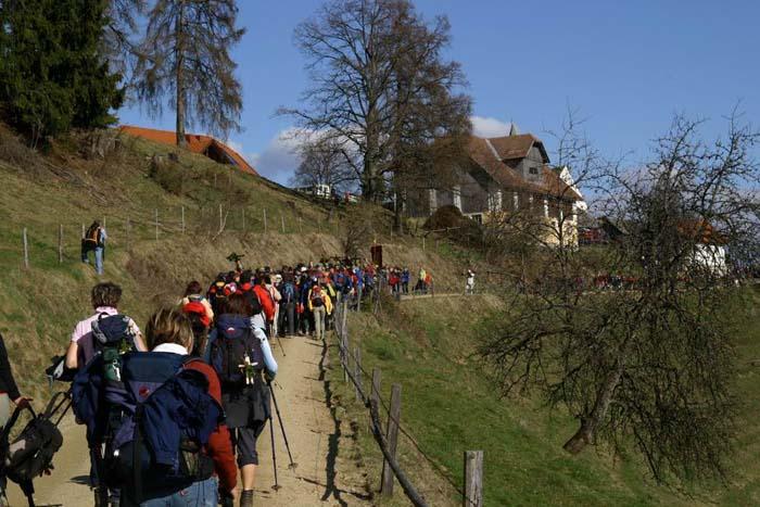 vierberge-2008_0116