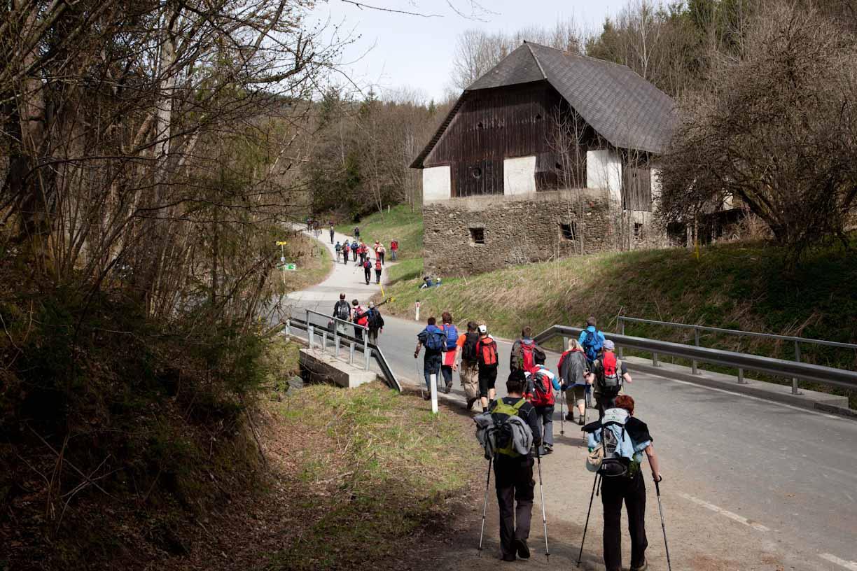vierbergewallfahrt-2012_3983