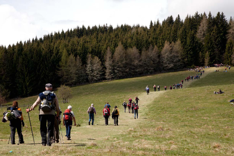 vierbergewallfahrt-2012_3995