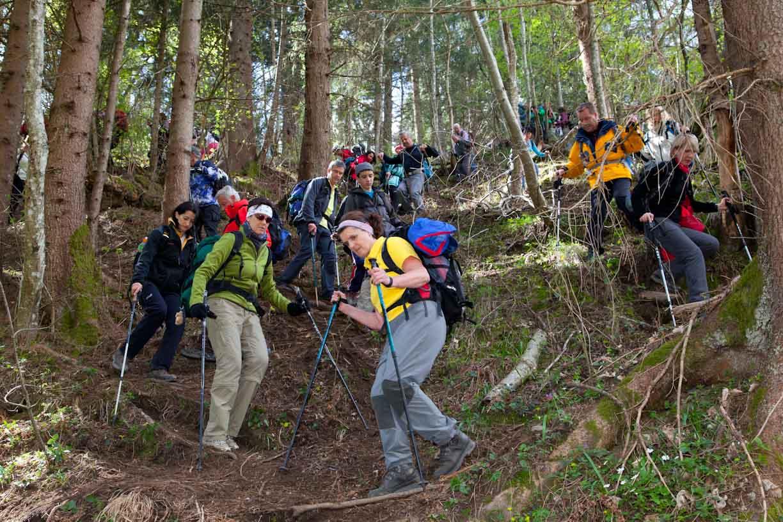 vierbergewallfahrt-2012_4007
