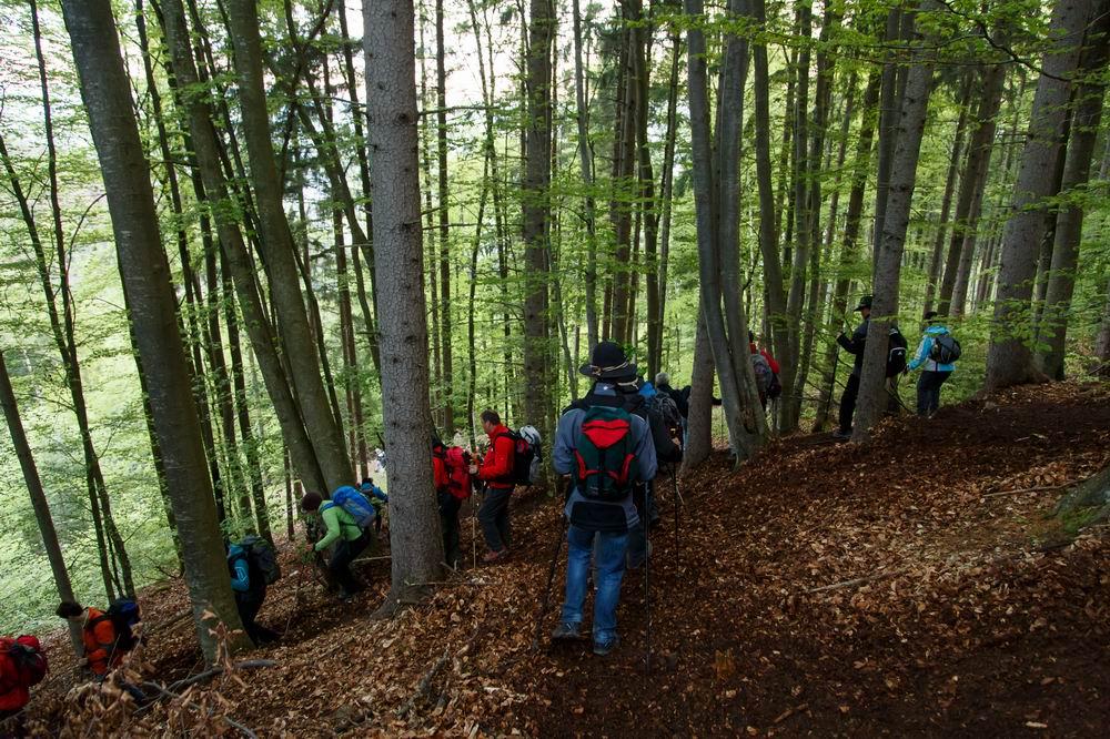 Vierbergewallfahrt 2014_D6A7831