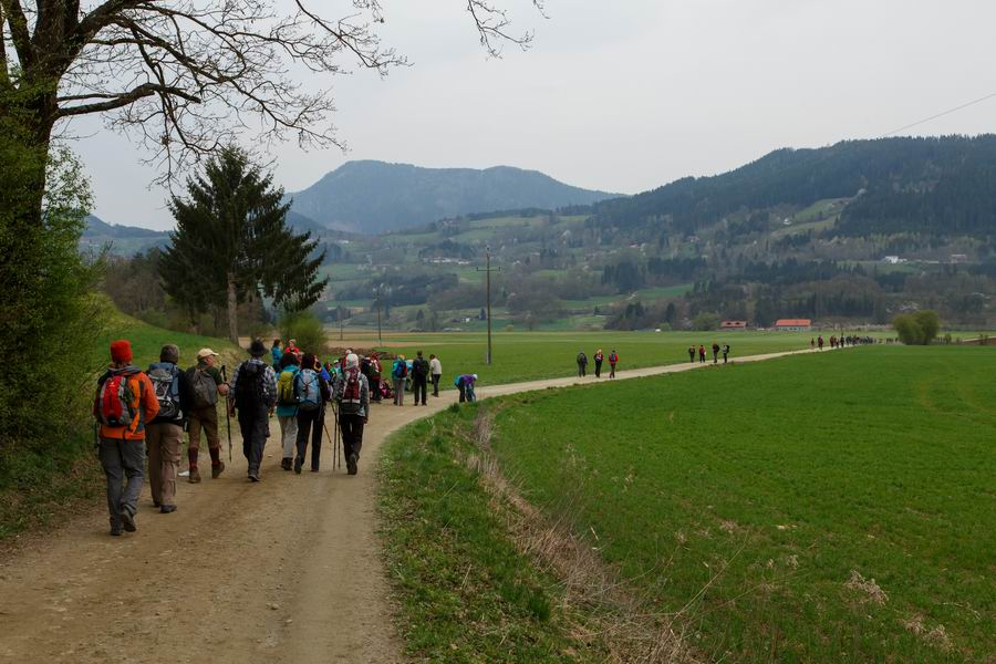Vierbergewallfahrt 2015_D6A1759