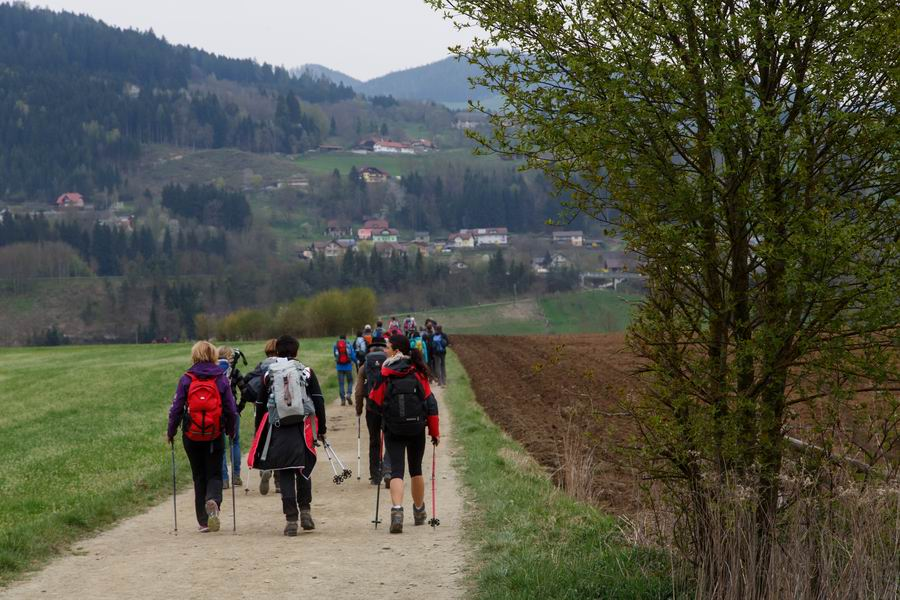 Vierbergewallfahrt 2015_D6A1765