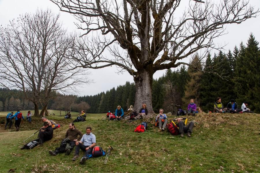 Vierbergewallfahrt 2015_D6A1802