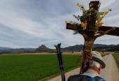 Vierbergewallfahrt 2015_D6A1637