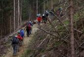 Vierbergewallfahrt 2015_D6A1797