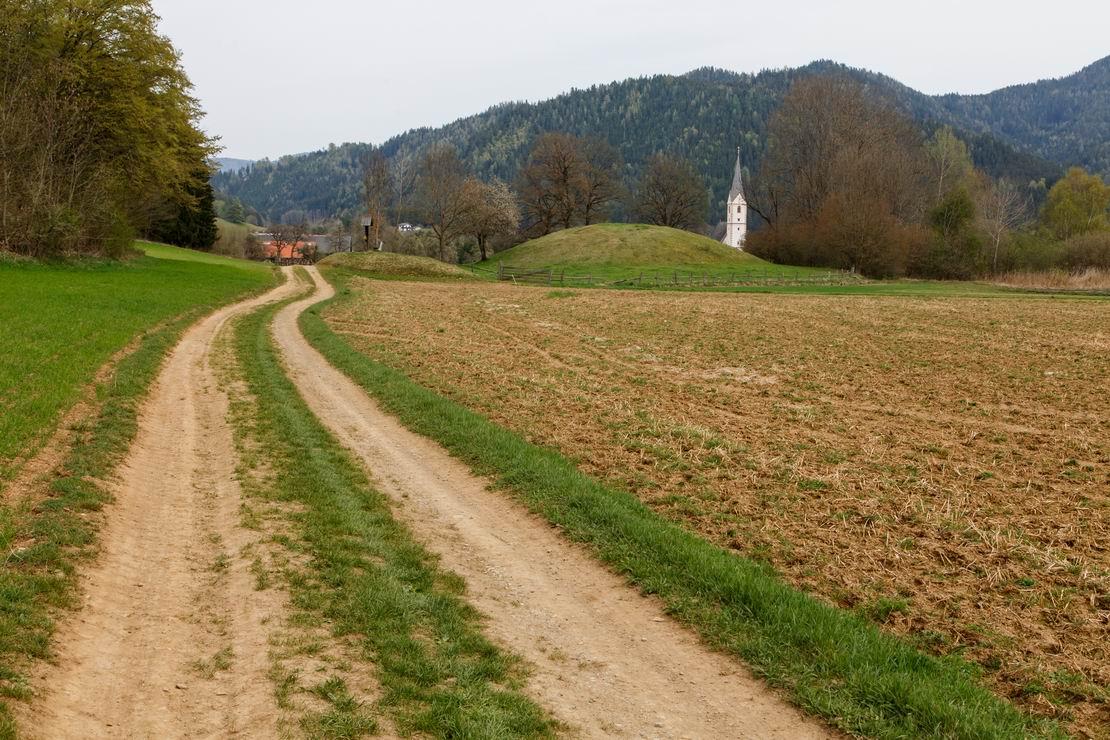 Vierbergelauf 2016_D6A8621